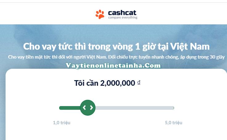 Cashcat.vn